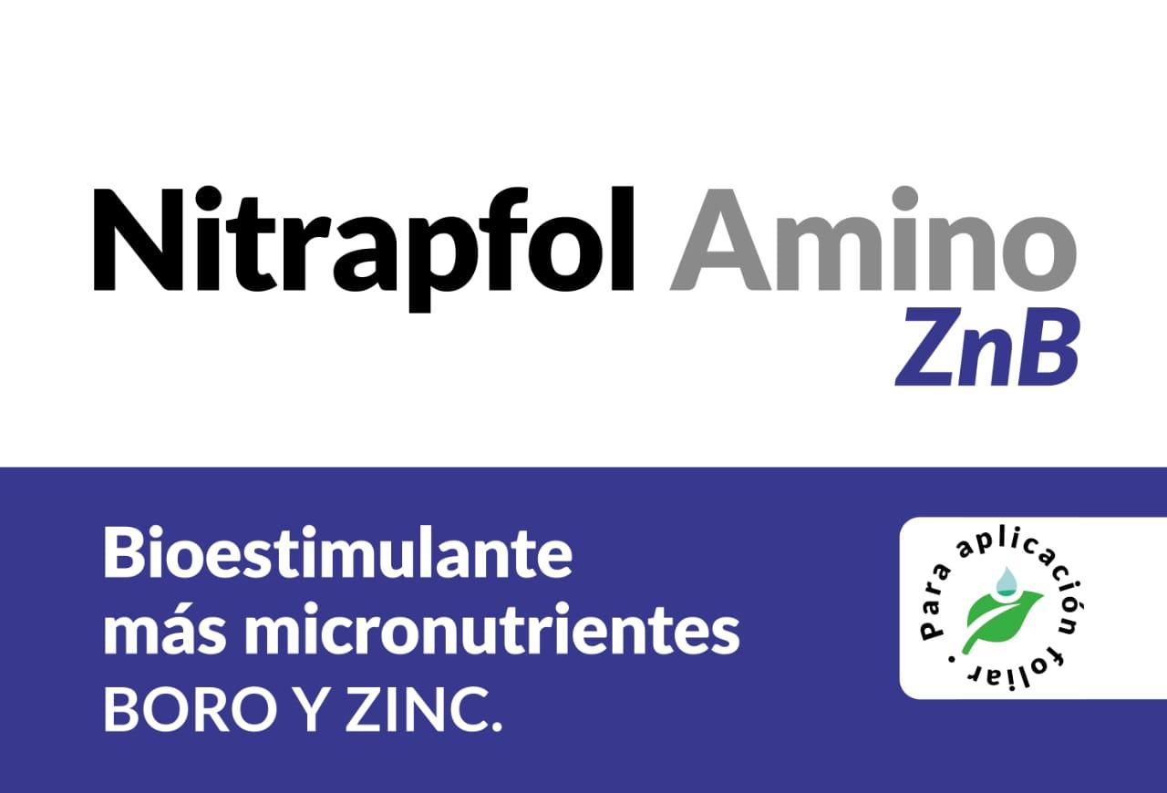 Nitrapfol Amino ZnB